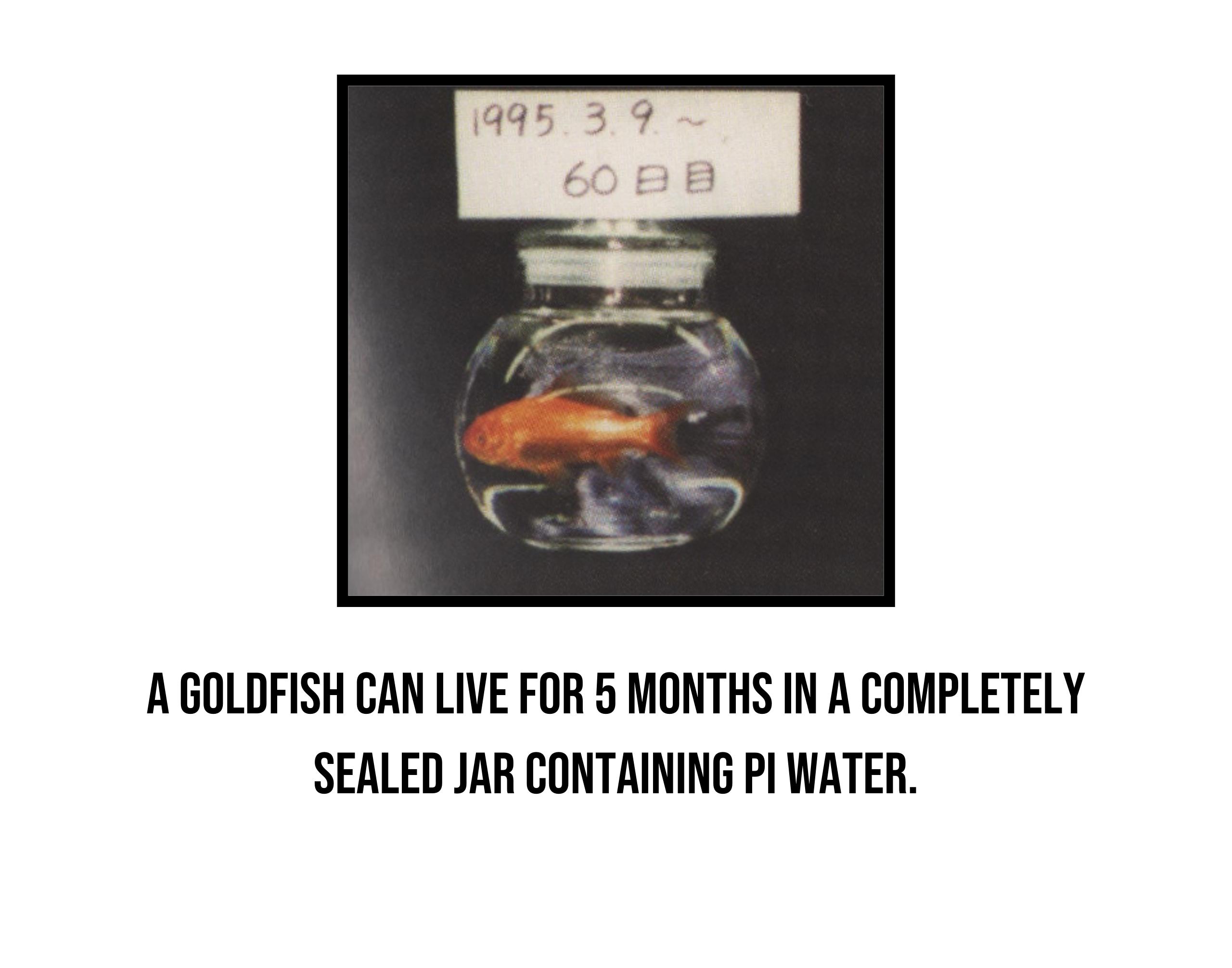 Phi Water 3